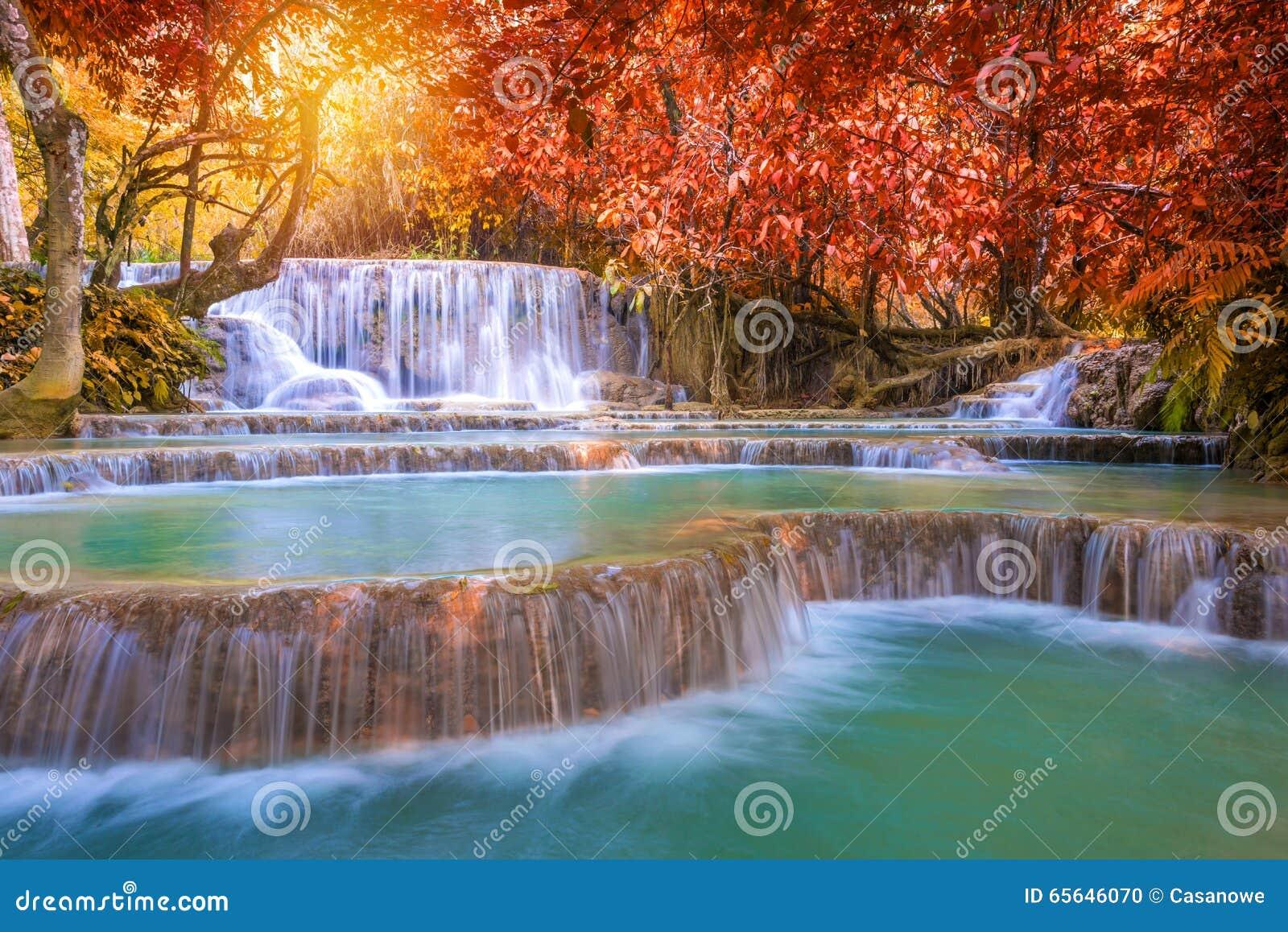 Cascade dans la forêt tropicale (Tat Kuang Si Waterfalls au praba de Luang