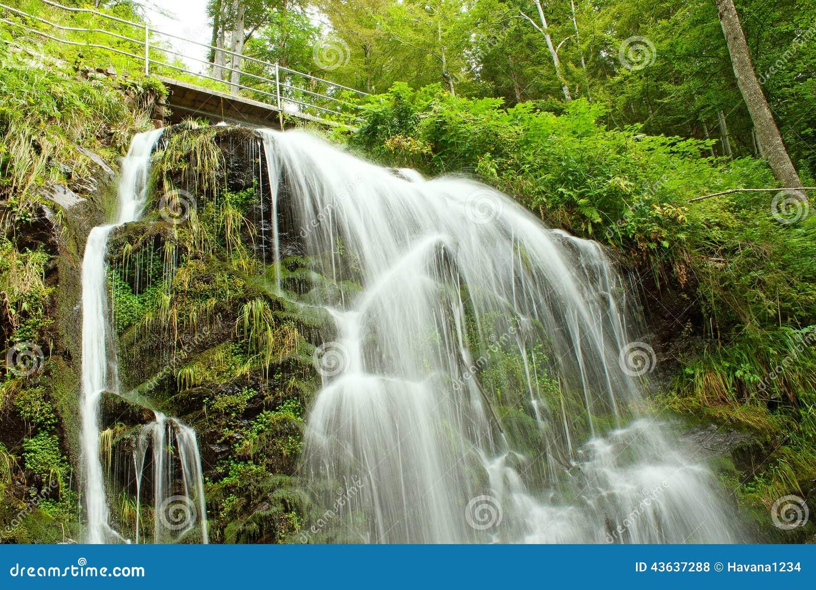 Favori Cascade De Conte De Fées Dans La Forêt Noire Allemagne Feldberg  KY42