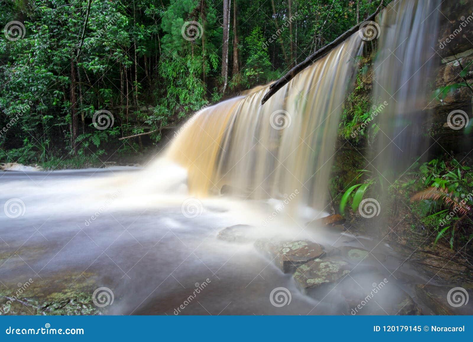 Cascade de Giluk en bassin de Maliau