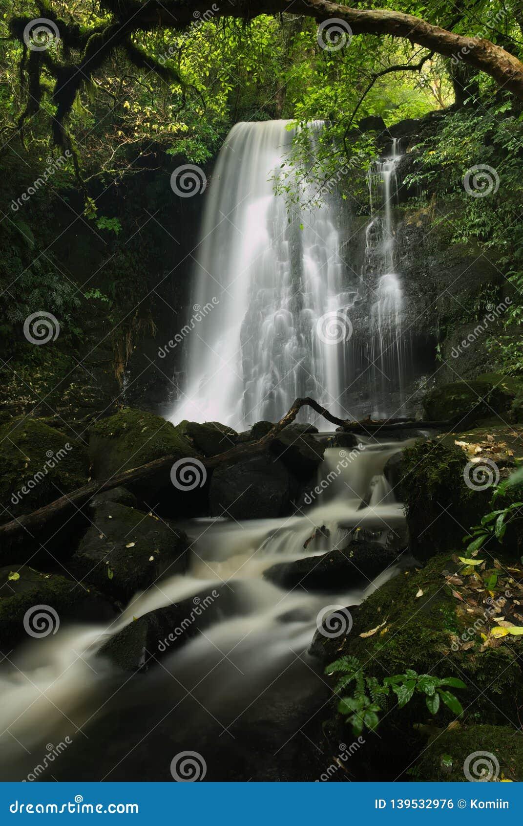 Cascade de Matai dans le Catlins