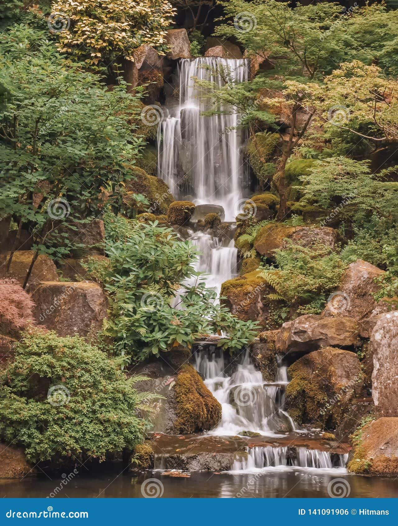 Cascade Et étang De Réflexion Dans Le Jardin Japonais De ...