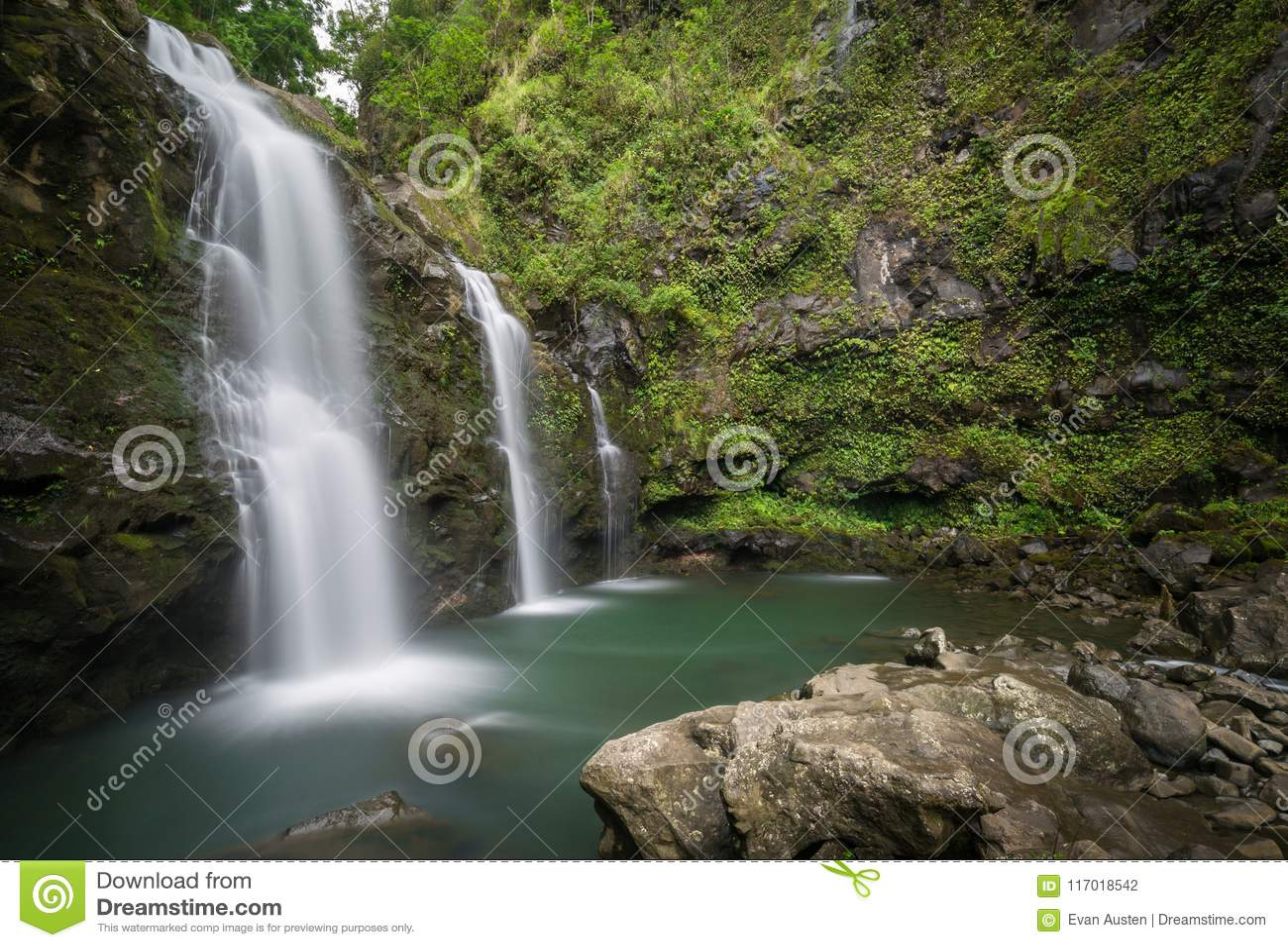 Cascade hawaïenne secrète profondément dans les jungles de Maui