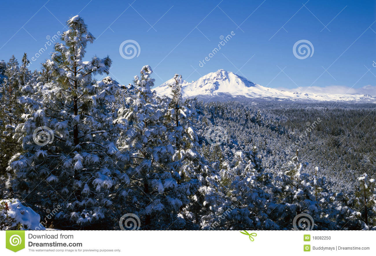 Cascade mountains in winter stock photo image 18082250