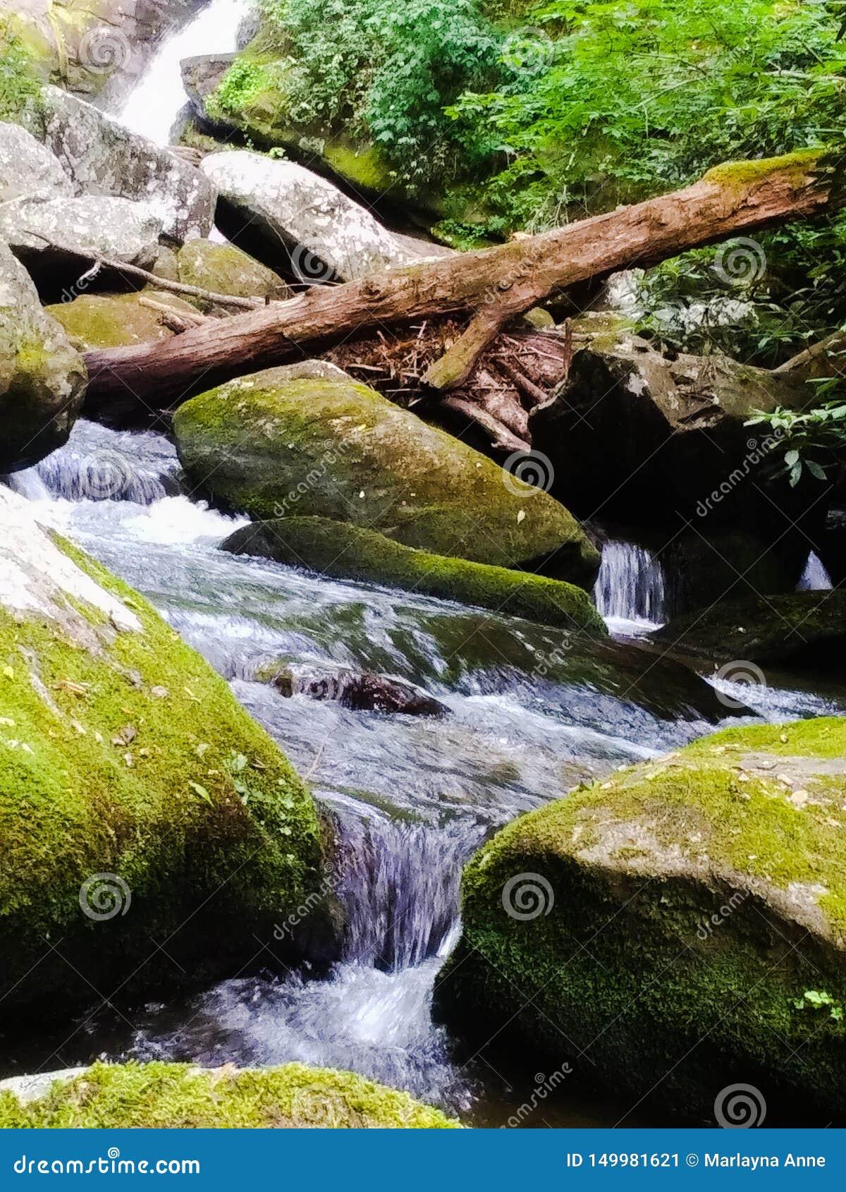 Cascades