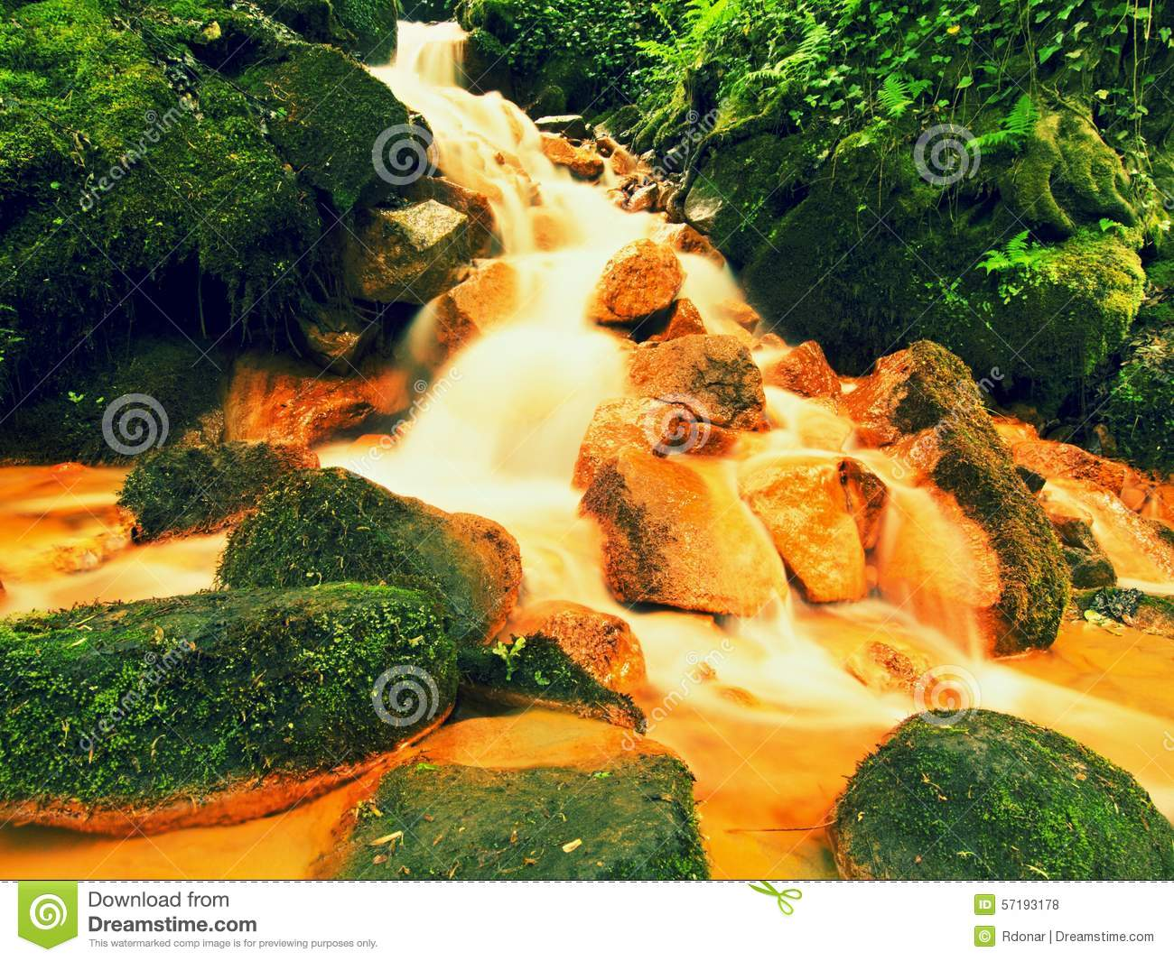 Cascades in rapid stream of mineral water. Red ferric sediments on big boulders between green ferns.