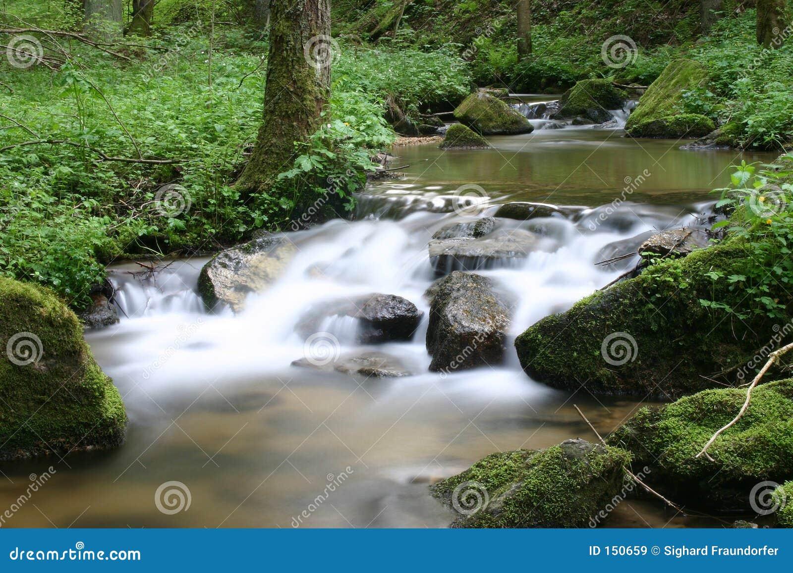 Cascades of water