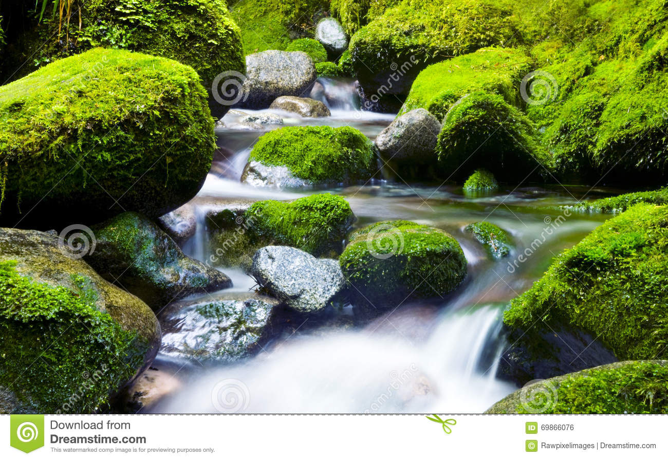 Cascading waterfall fresh nature green environment concept for Waterfall environment