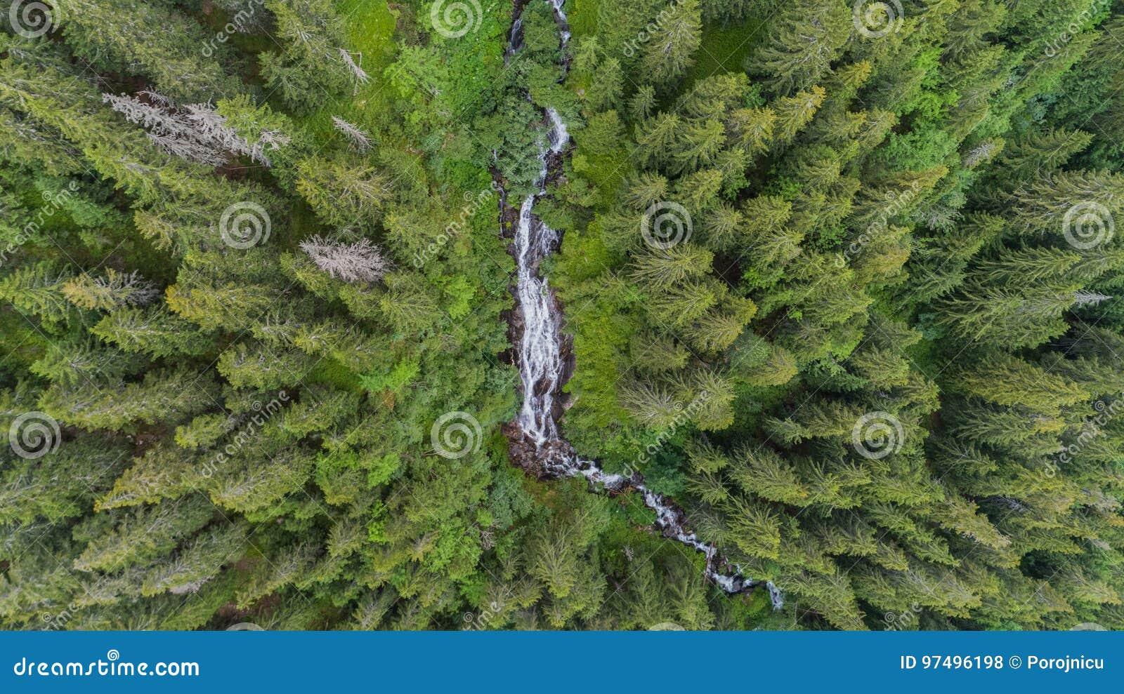 Cascata Cascada tumultuoso Zbuciumata Montagne di Fagaras, Romania