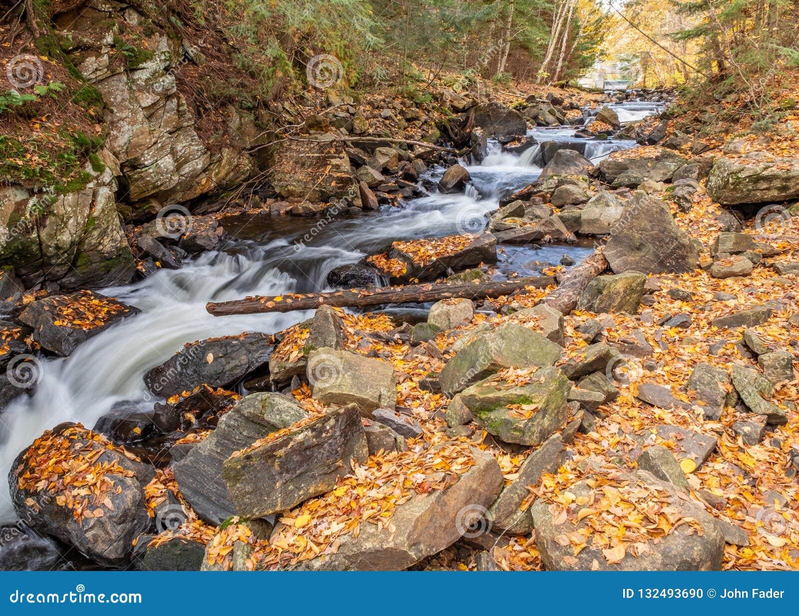 Cascata del fiume del parco del Algonquin