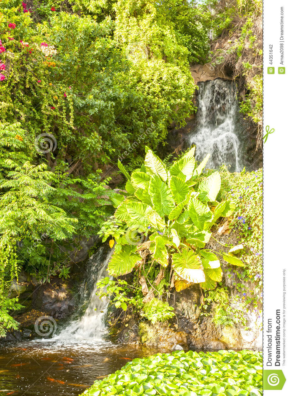 Cascata giapponese