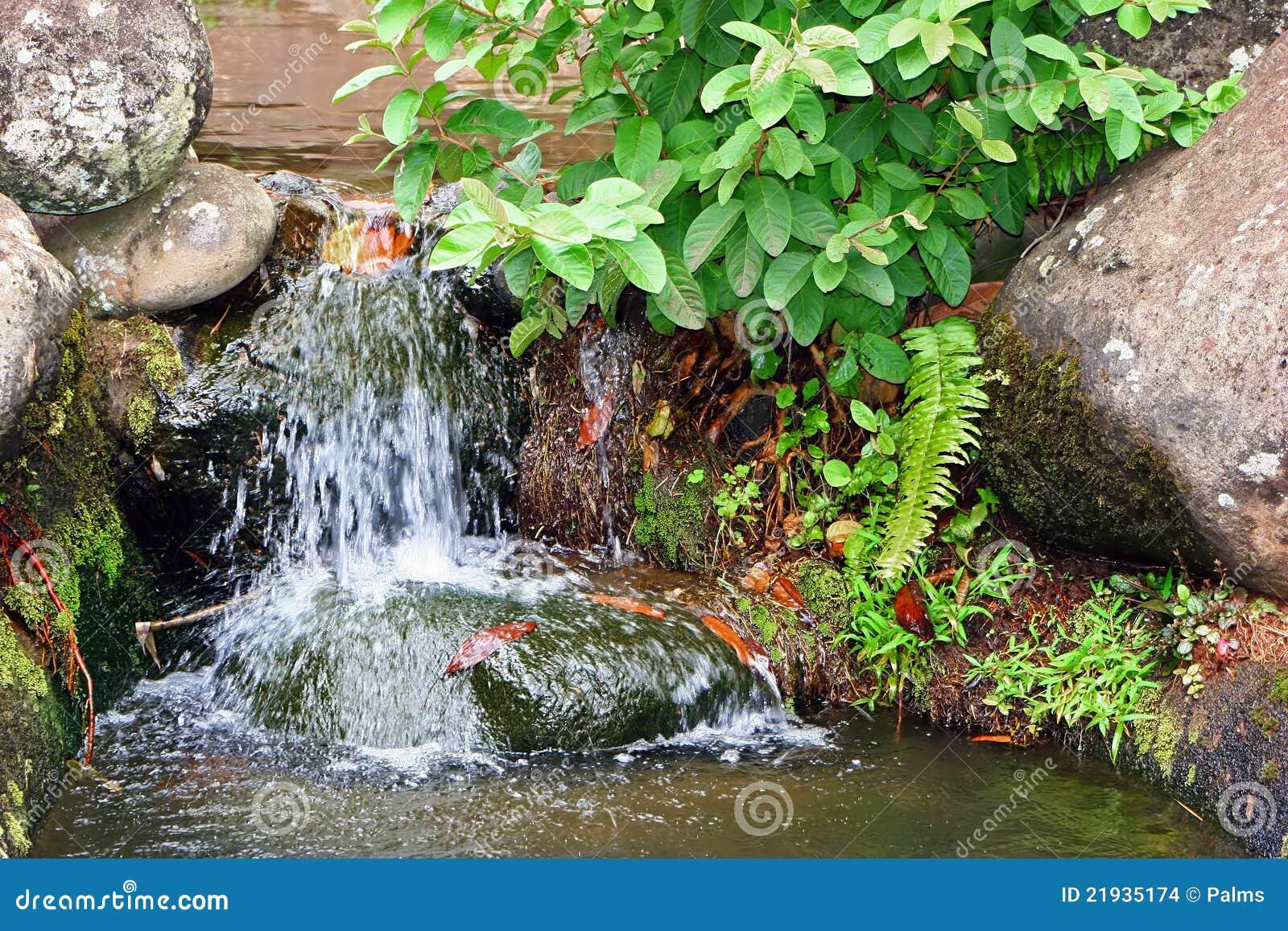 Cascata in giardino roccioso fotografia stock immagine for Cascata giardino