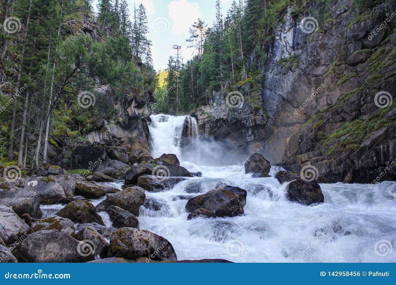 Cascata sul fiume Kadrin Paesaggio di estate - aria pulita di Altai