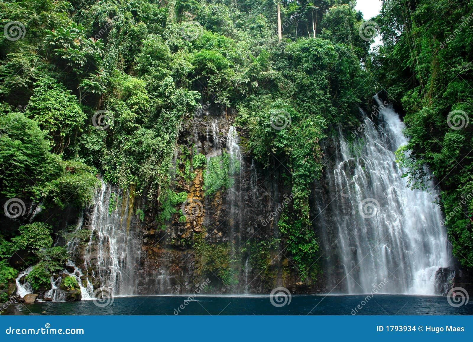 Cascata tropicale in giungla