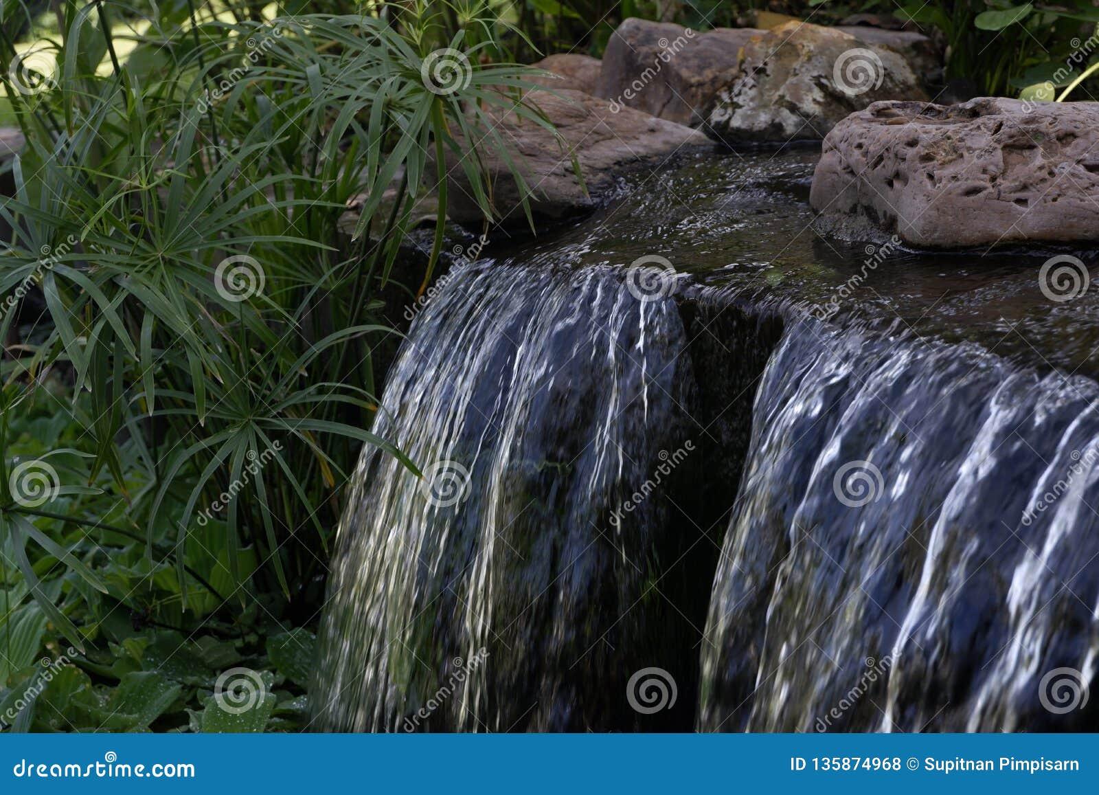 Cascate, disposizione del giardino, cascate nel giardino