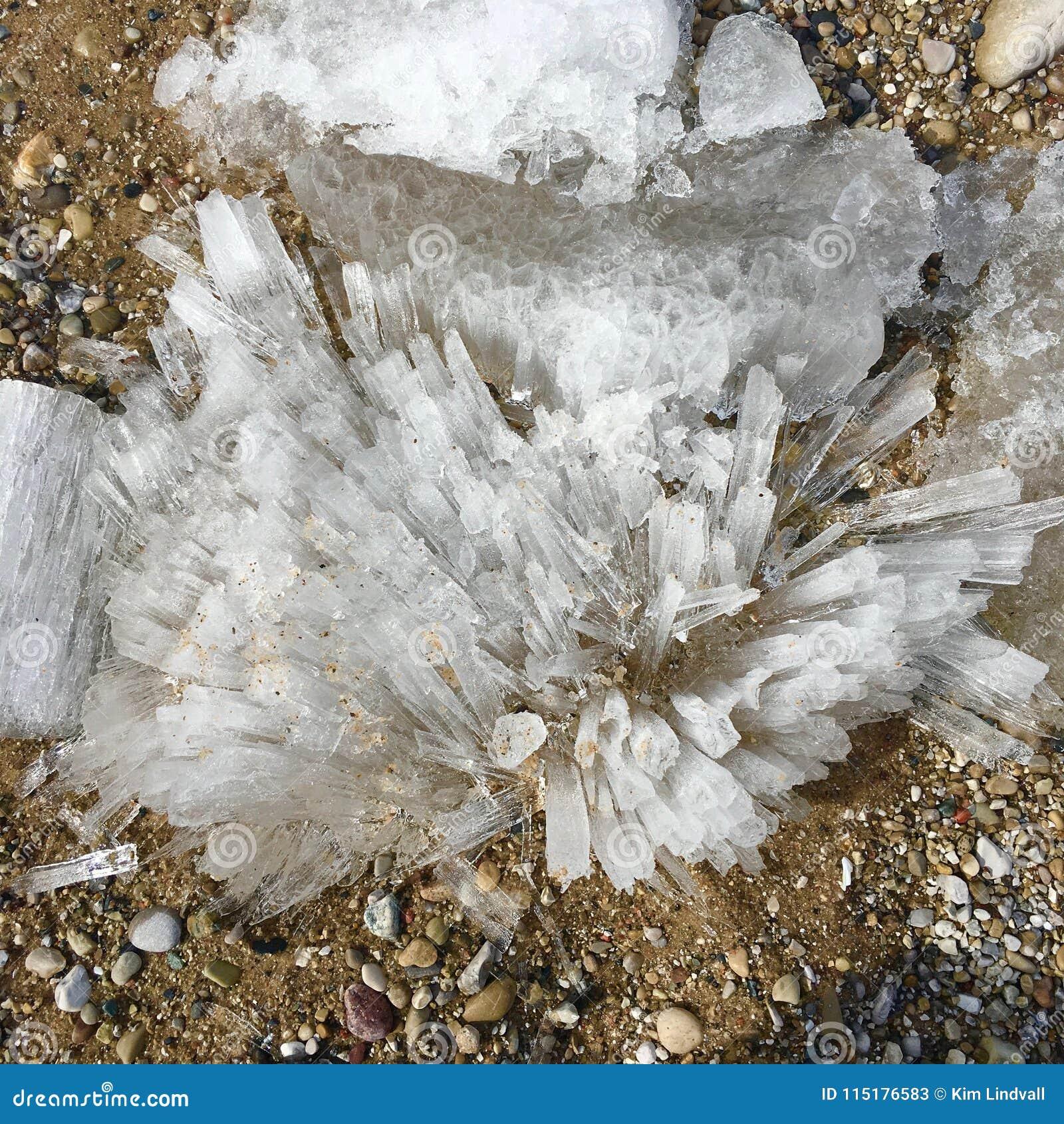 Cascos del hielo en la playa del invierno; El lago Michigan en Glen Haven, MI