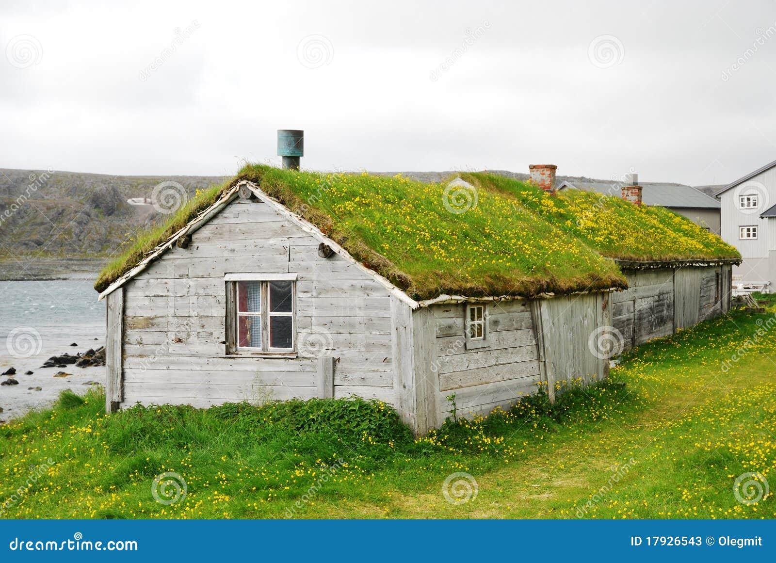Case di legno con i tetti verdi in hamningberg immagine for Tetti di case moderne