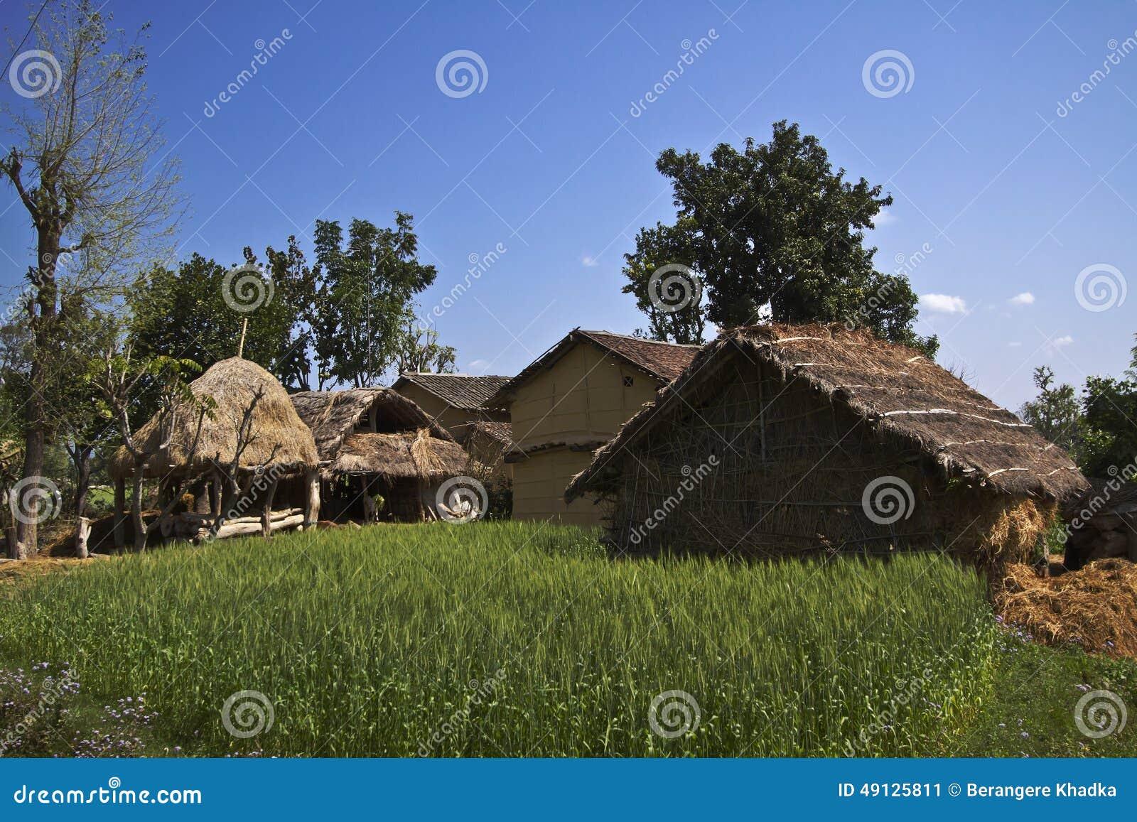 Case tradizionali di taru in terai nepal immagine stock for Case tradizionali