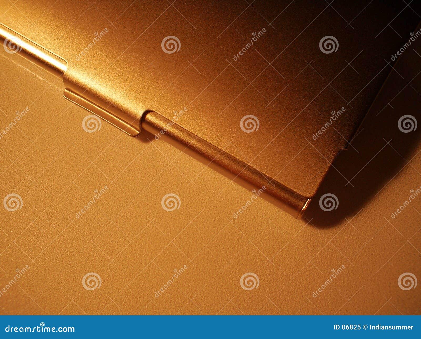 Casella della visualizzare-scheda del metallo