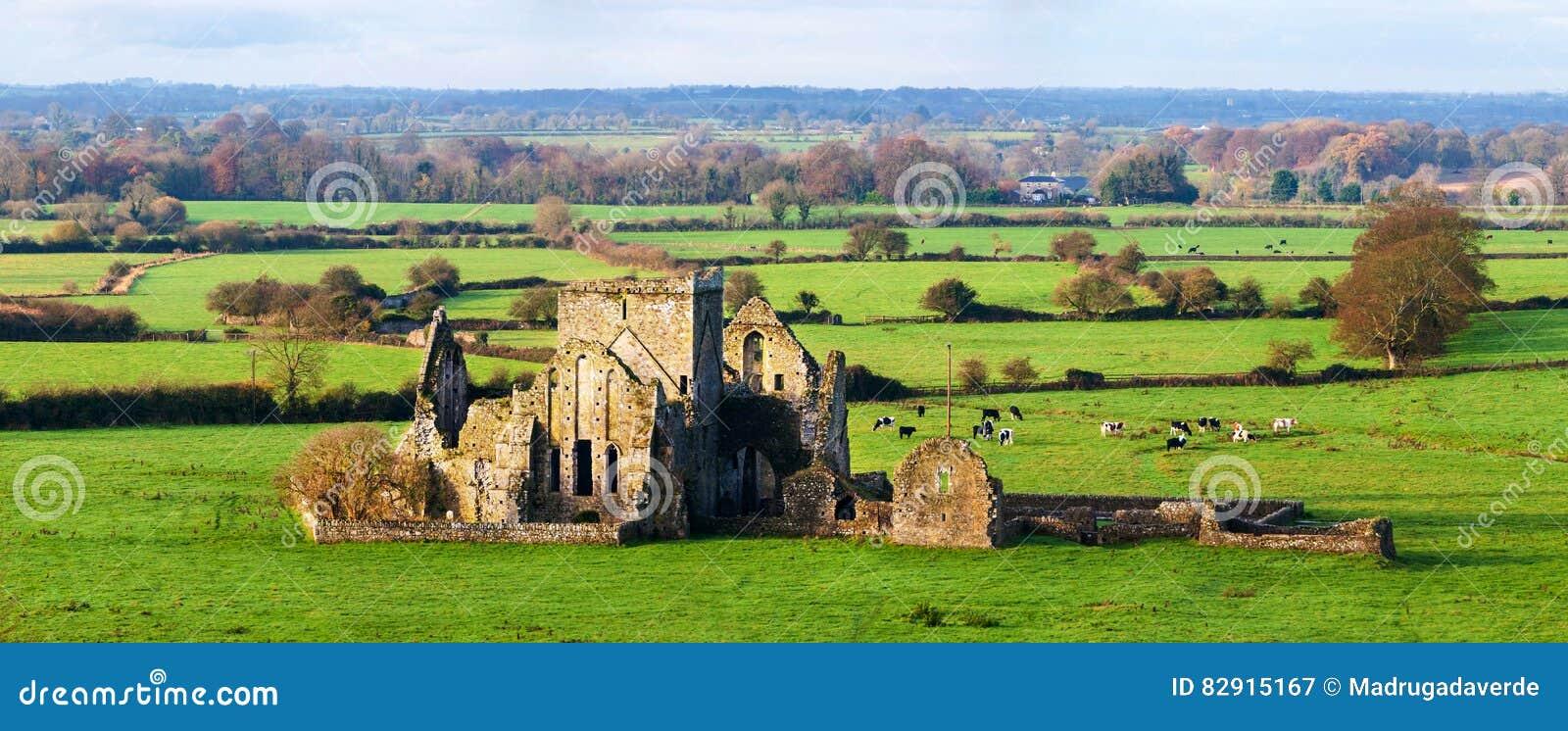 Cashel, Irlande Vue panoramique des ruines d une abbaye de Hore