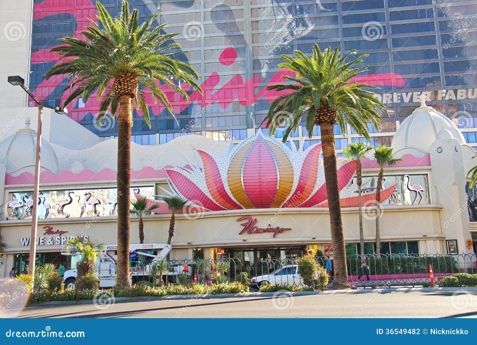 Flamingo casino las vegas nevada jupiter casino accommodation