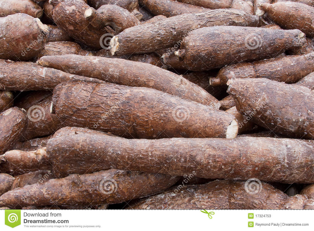 Full frame shot of a pile of Cassava root, also known as Yucca.