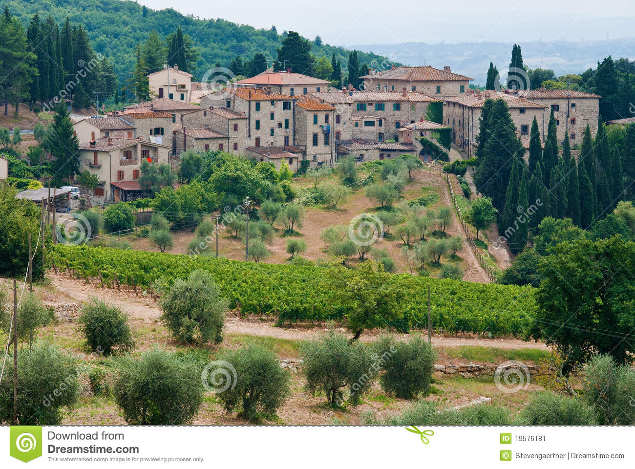 View of olive groves, vineyards and castellina of chianti, italy.