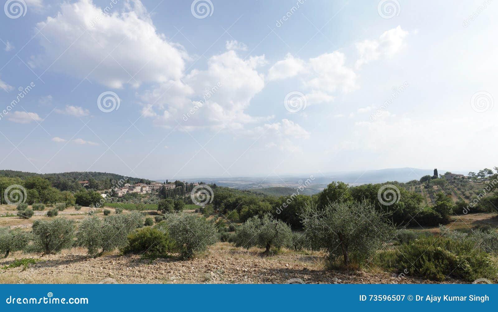 Castellina dans le chianti sur la colline, Toscane