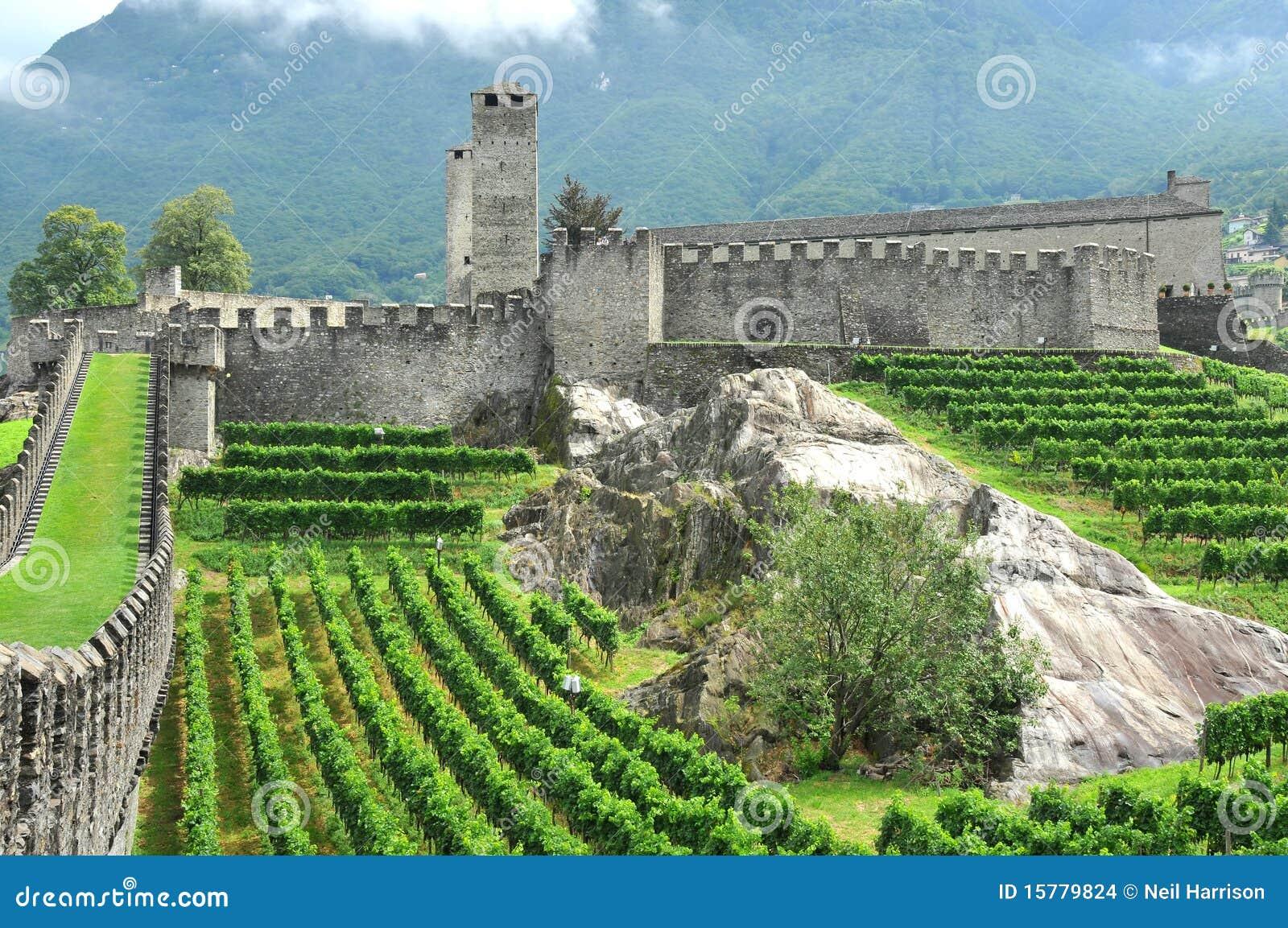 Castello e vigne