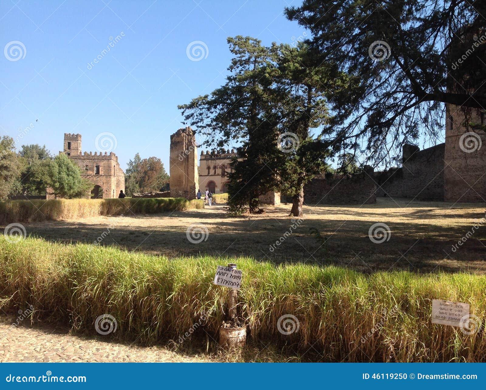 Castello Gondar Etiopia di Fasil