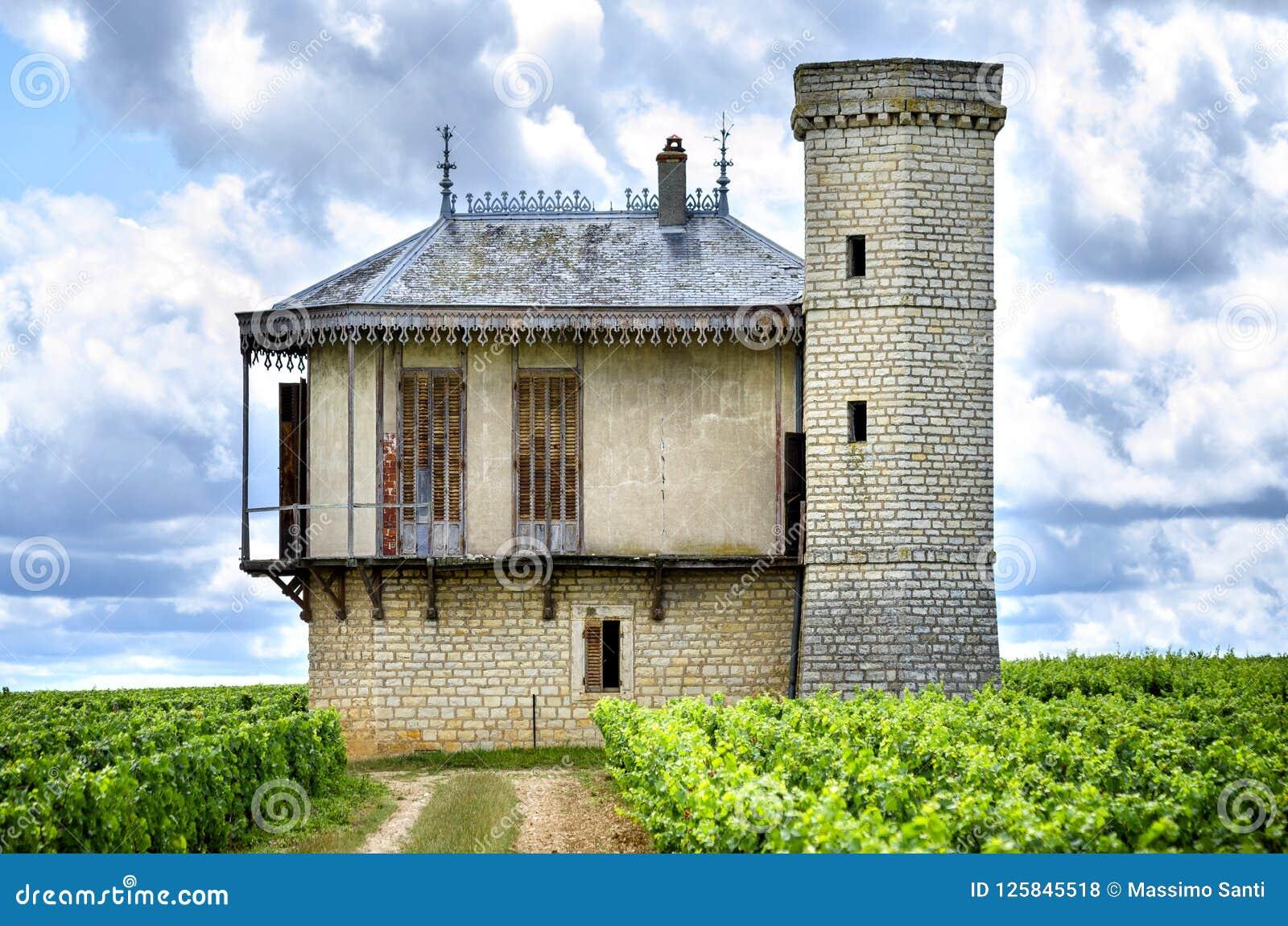 Castelo com vinhedos, Borgonha, France