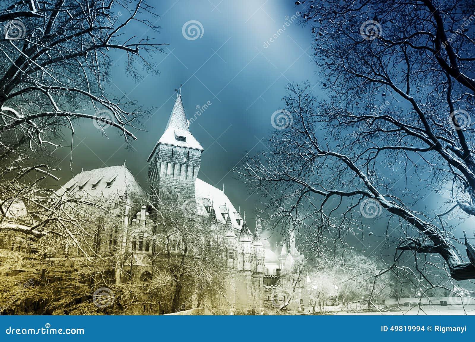 Castillo del cuento de hadas en la noche