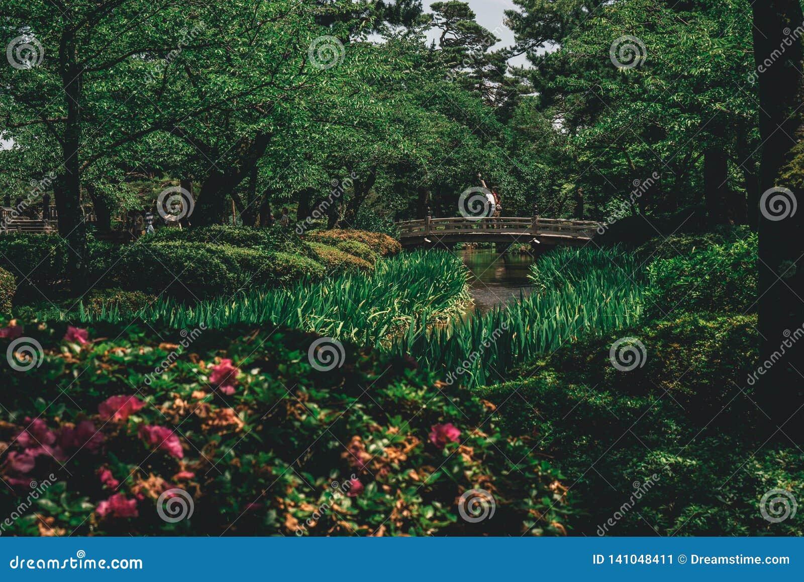 Castillo del puente del jardín de Japón