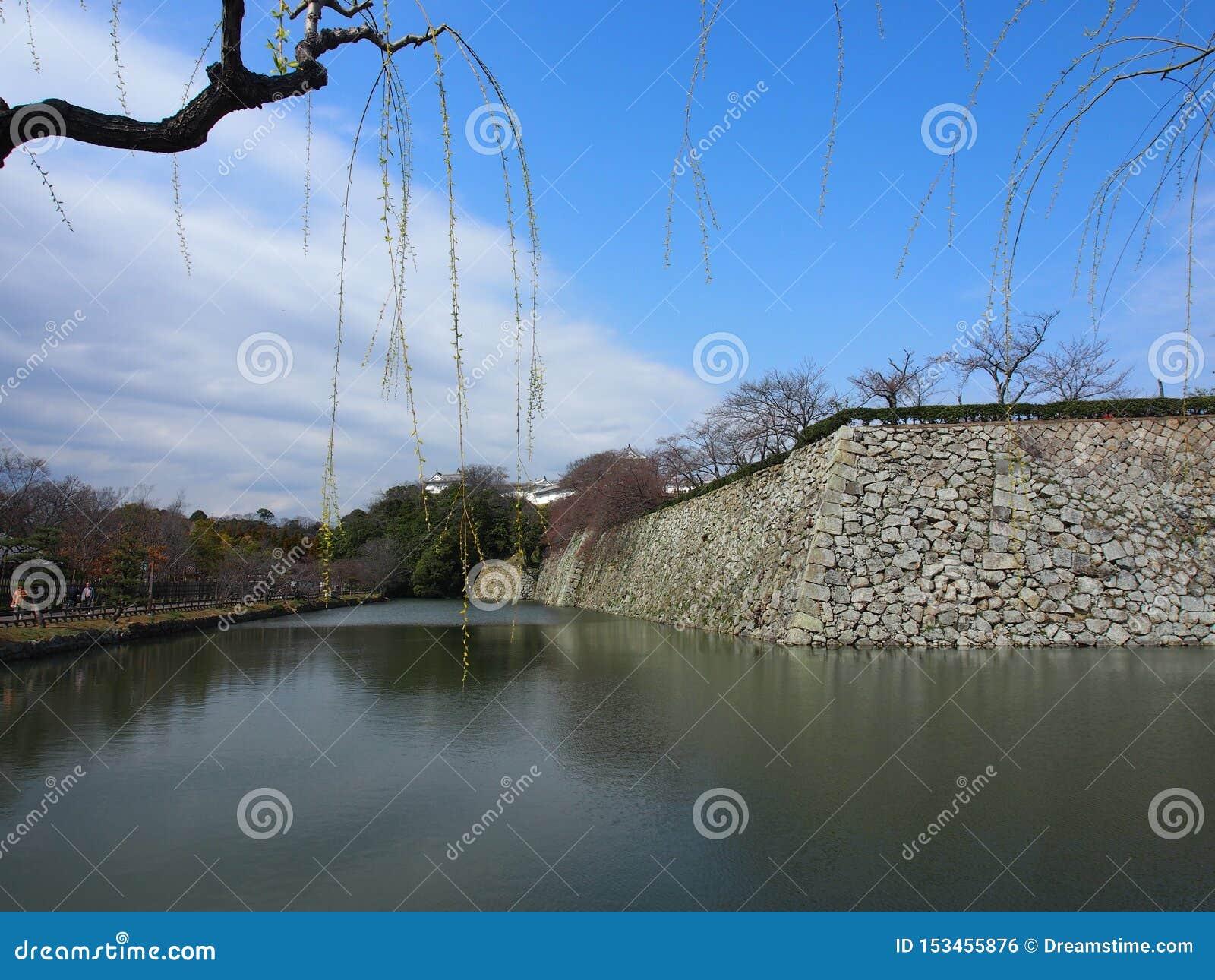 Castillo Osaka Japan Travel del cielo