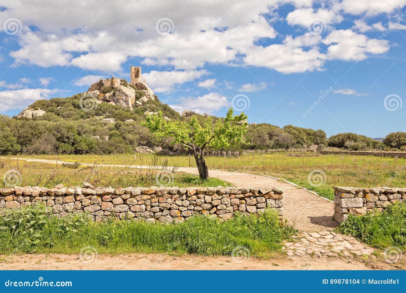 Castle of Pedres - Olbia Sardinia