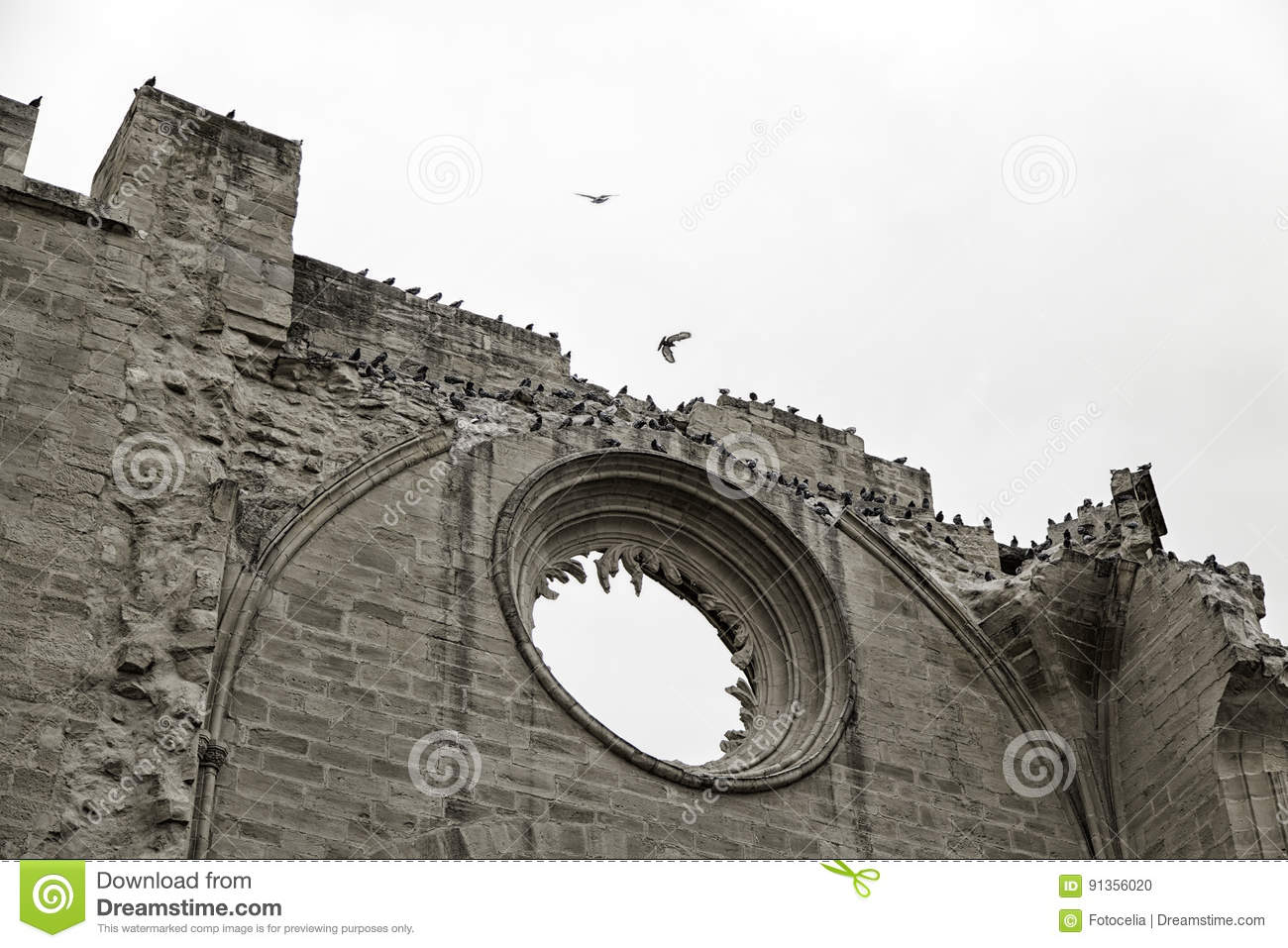 Castle with pigeons