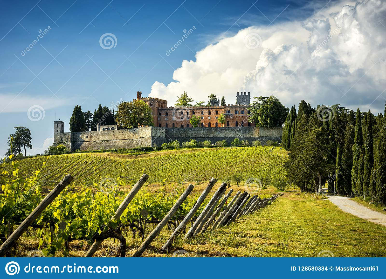 Brolio Castle and the nearby vineyards. The Castle is located in the production area of the famous Chianti Classico wine. Tuscany,