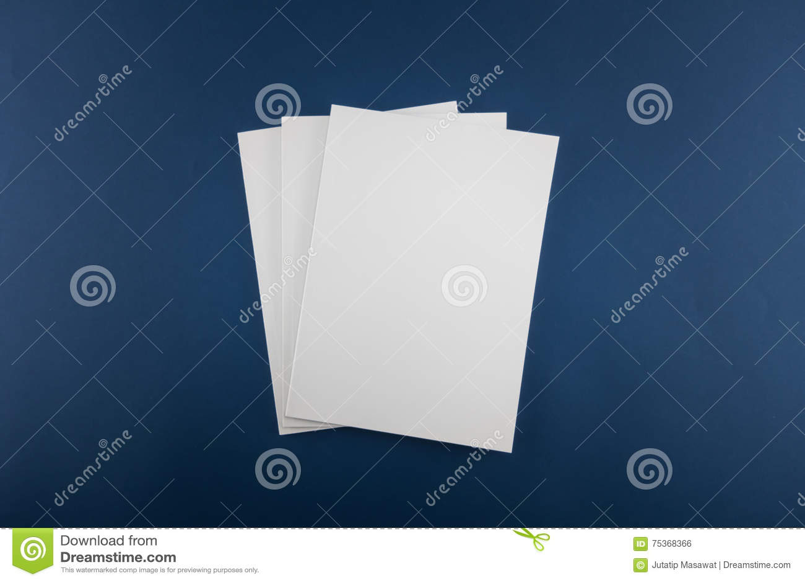 Catálogo vazio, compartimento, molde do livro com sombras macias pronto