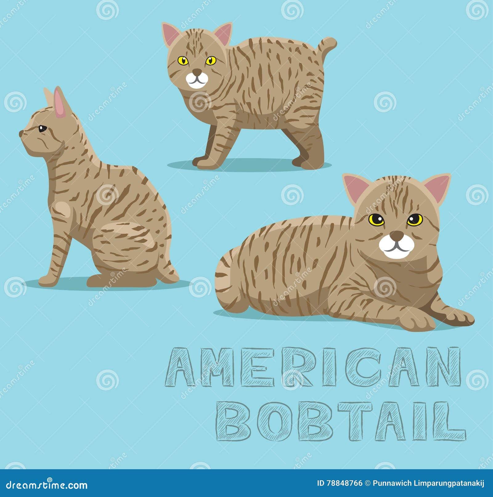 Cat American Bobtail Cartoon Vector Illustration Stock Vector