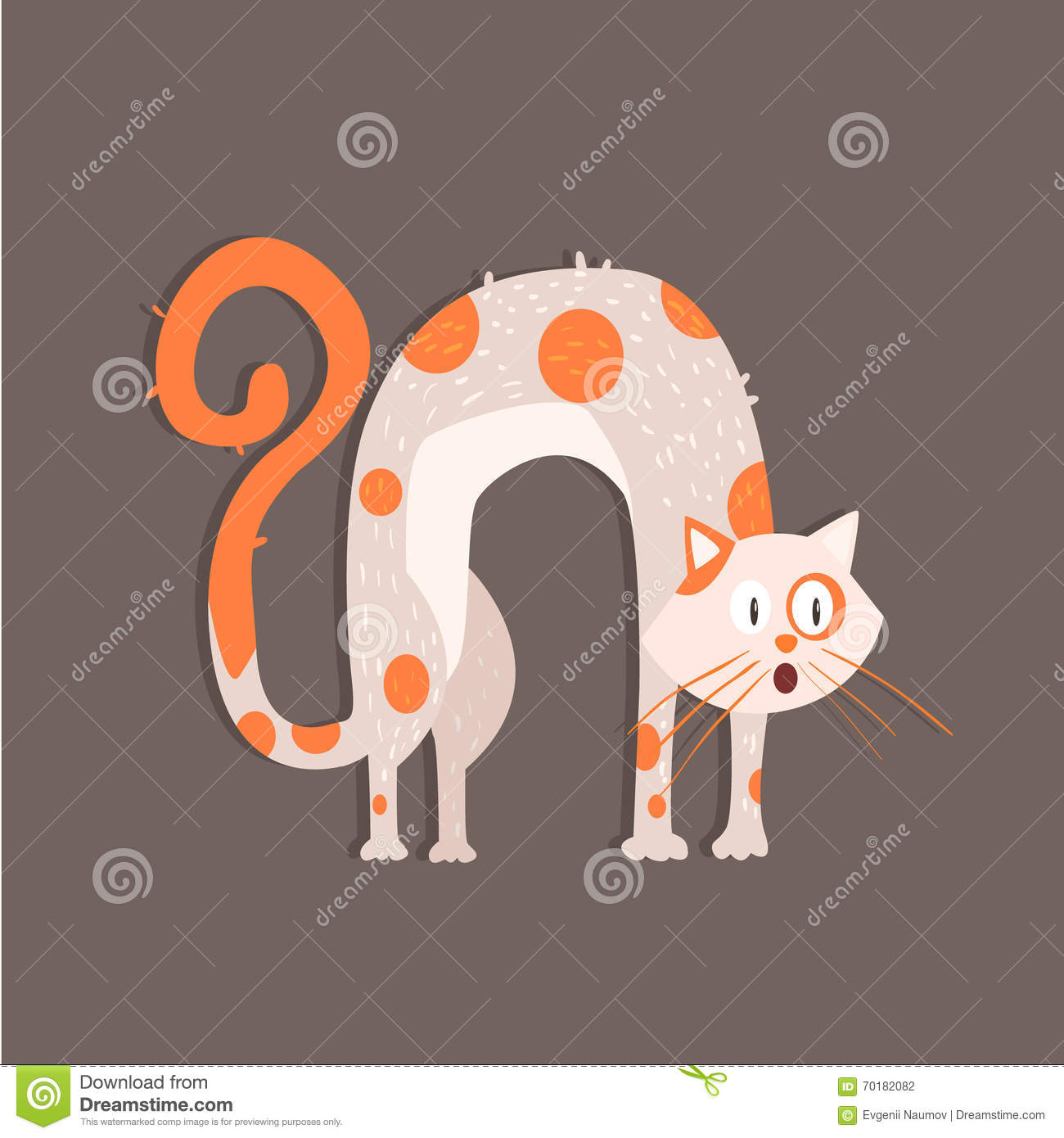 Cat With Arched Back Image