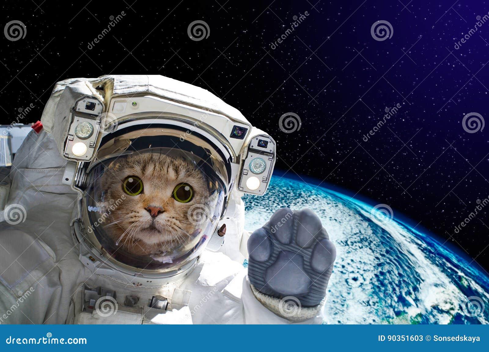 astronaut in the spacecraft - photo #46