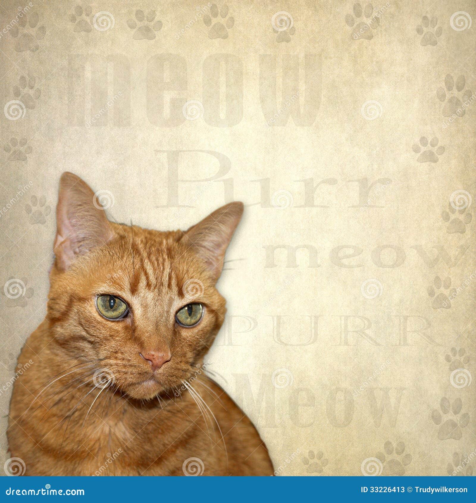 fat cat ffxiv