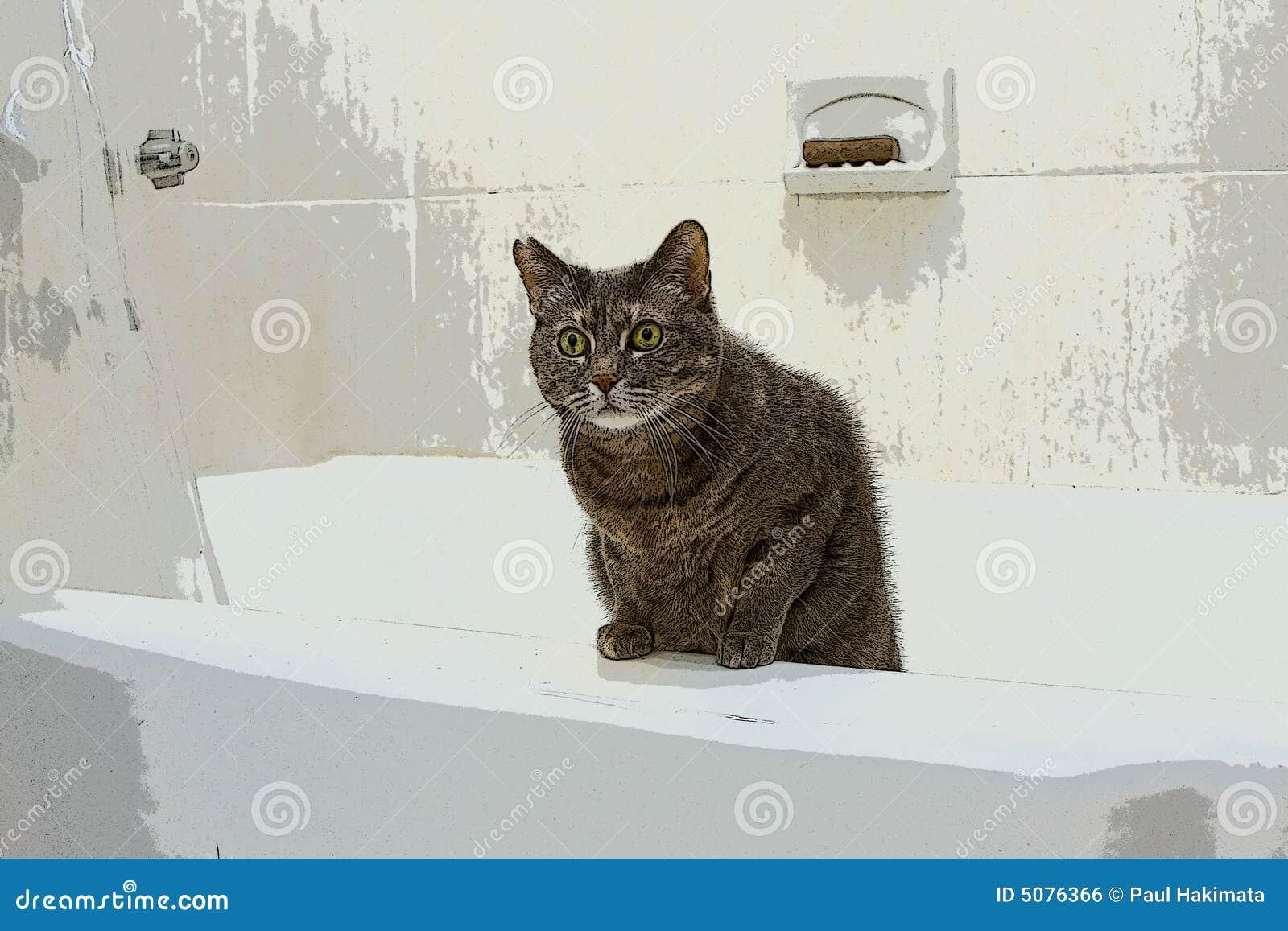 Cat In Bathtub Royalty Free Stock Image Image 5076366