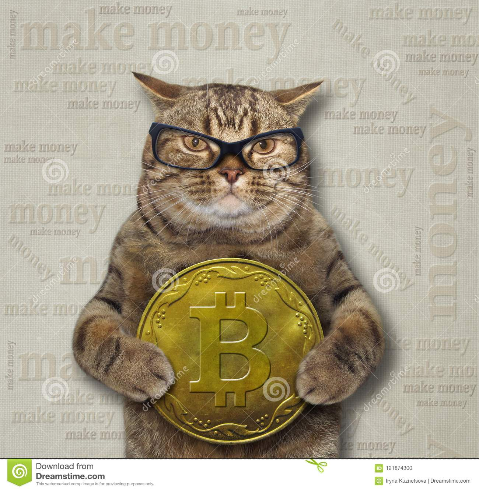 cat bitcoin