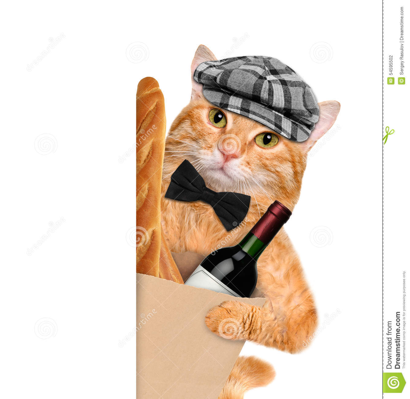 Cat With Sausage And French Bread Stock Photo - Image of ...  |Cat French Bread