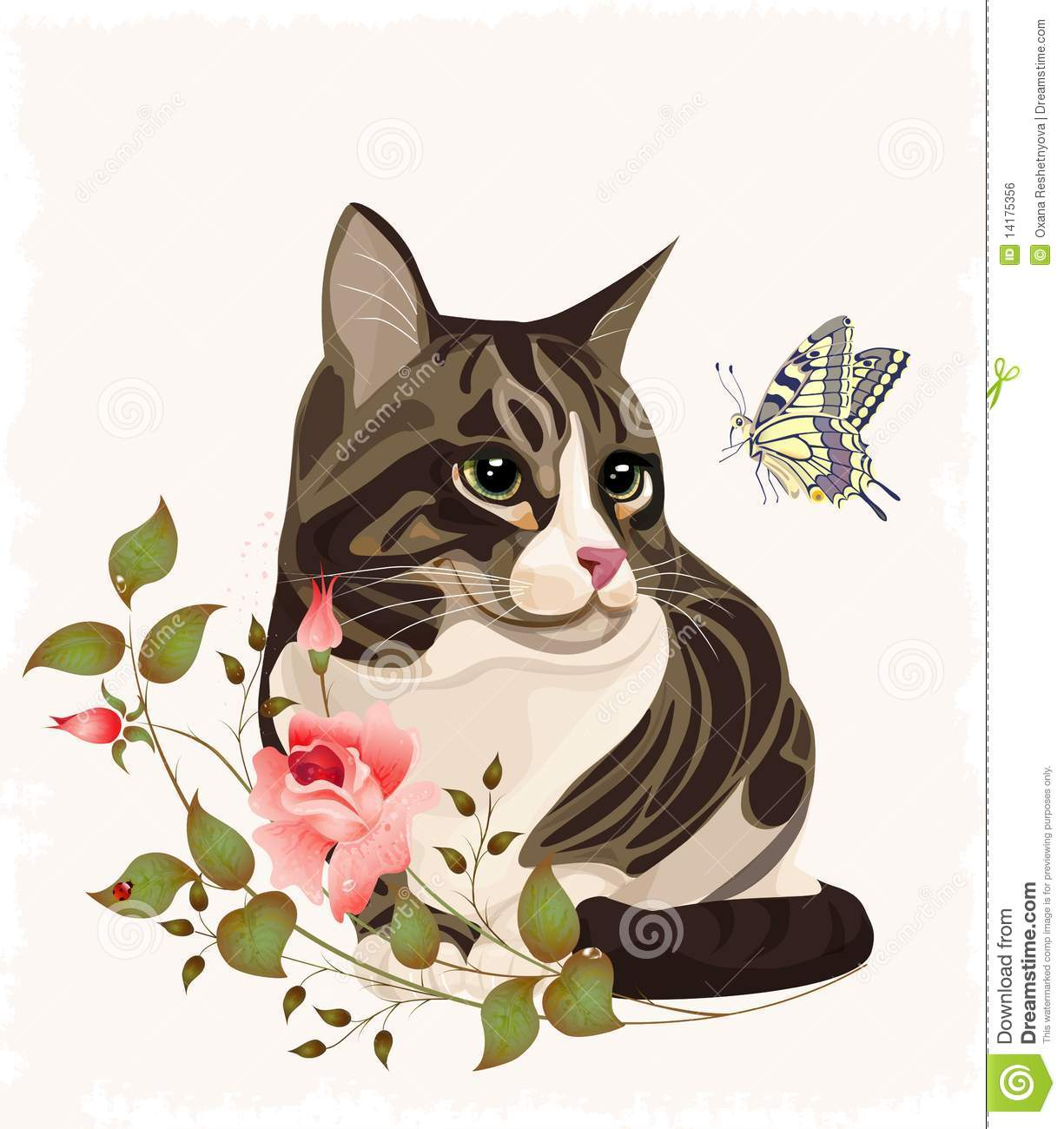 cat and butterfly royalty free stock image image 14175356