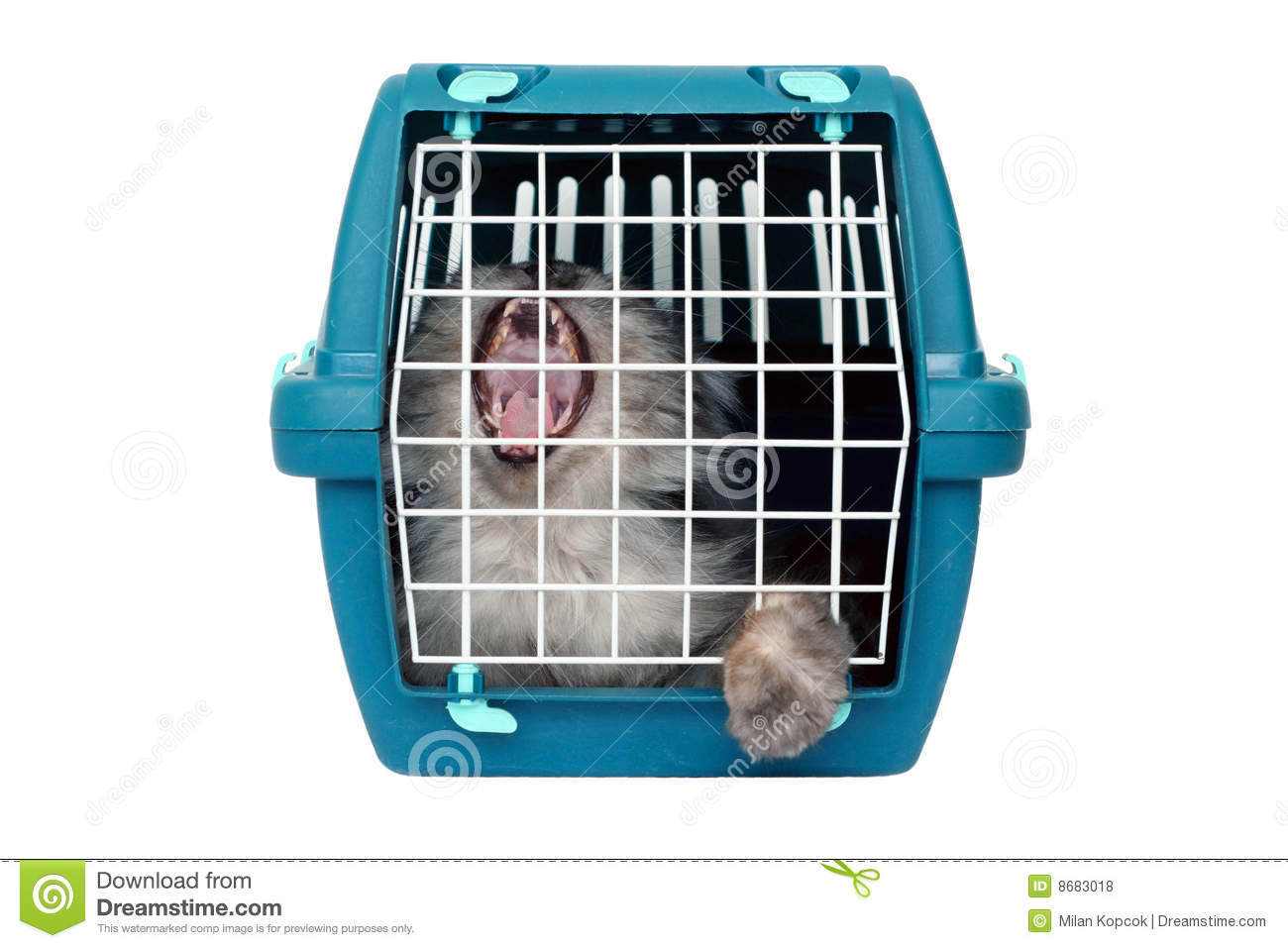 cat cage clipart - photo #47