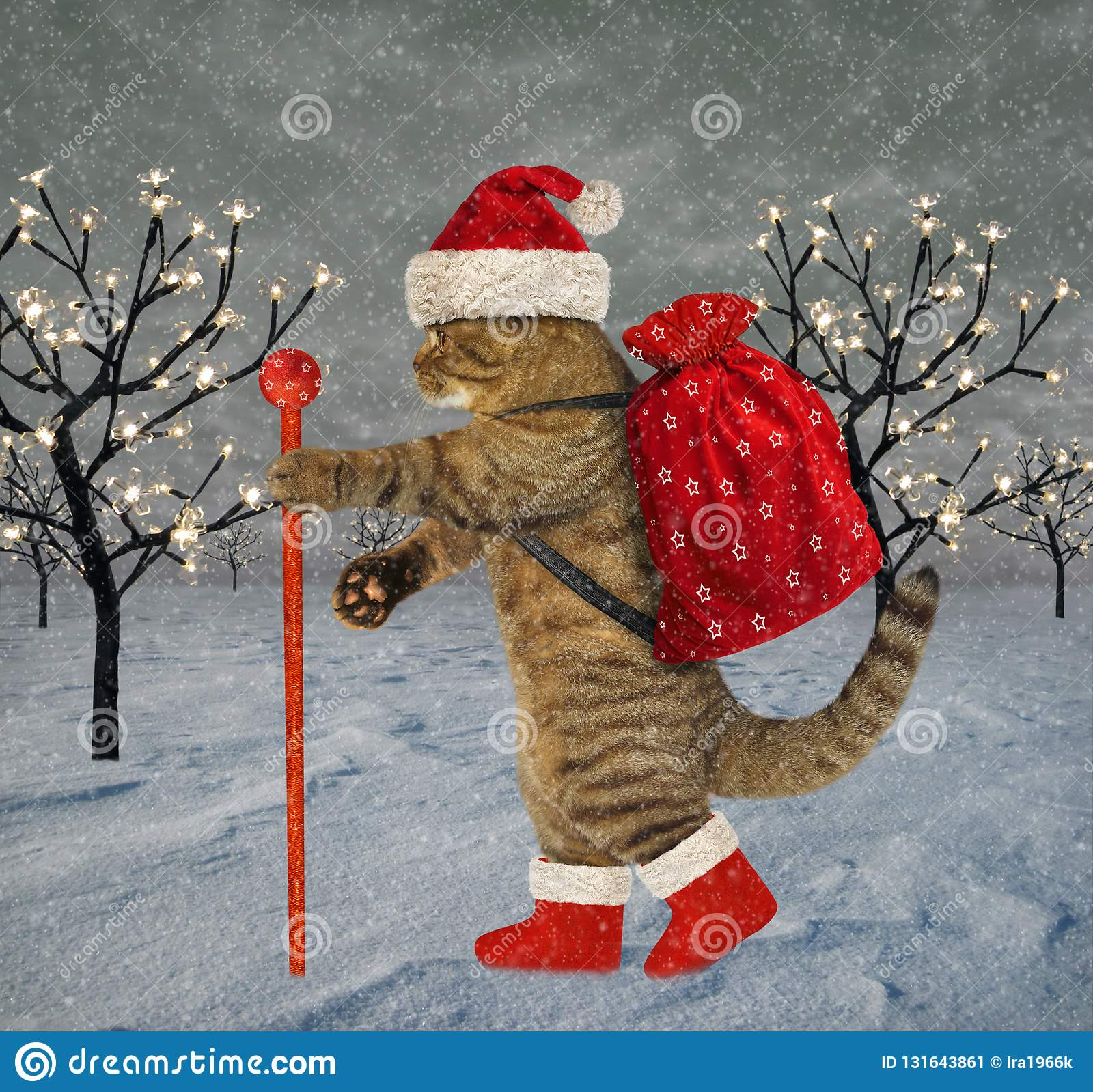 Cat carries Christmas gifts