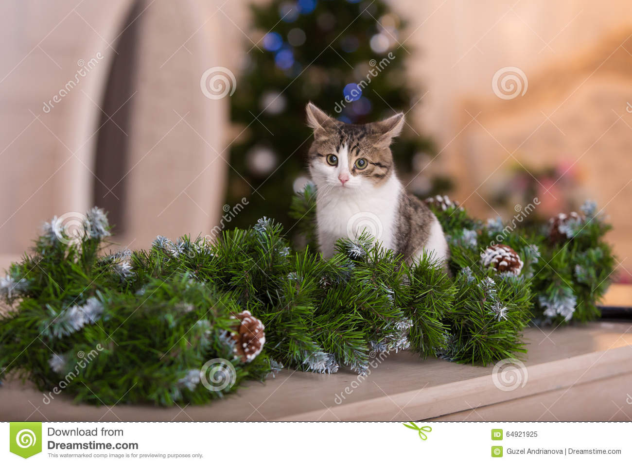 cat and christmas decorations - Cat Christmas Decorations