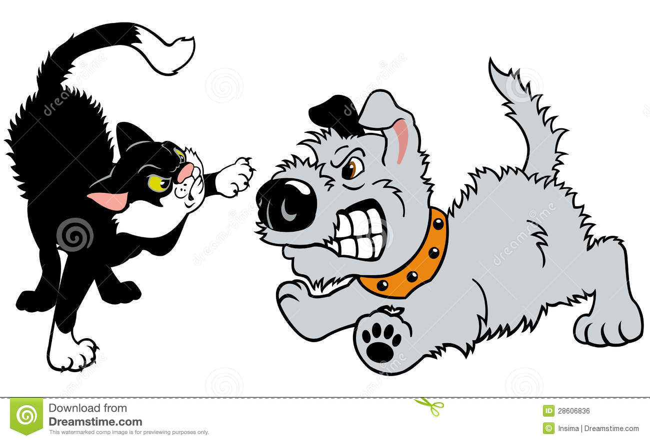 Cat And Dog Fighting Royalty Free Stock Image