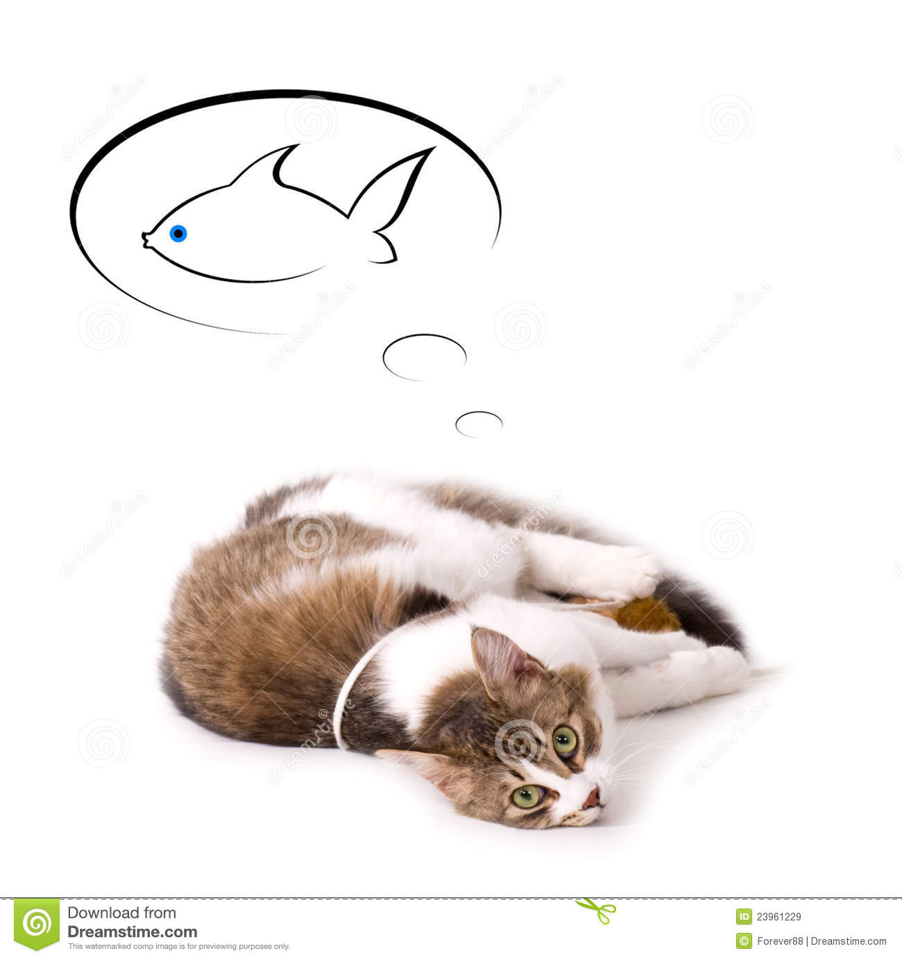 Cat dream about fish royalty free stock images image for Dream about fish